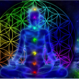 Vedic Astrology Divinity World